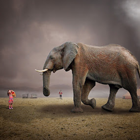 Circus is back in town by Frank Quax - Digital Art Animals
