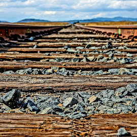 Between the Ties by Barbara Brock - Transportation Railway Tracks ( train tracks, railroad tracks, wood and gravel, railroad ties, train tracks down low )