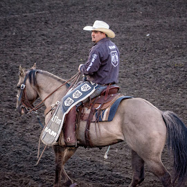 Rodeo Pickup Man by Gary Hanson - Sports & Fitness Rodeo/Bull Riding ( protection, safety, horse, pickup man, riders )