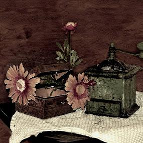 Old by Neli Dan - Artistic Objects Still Life (  )