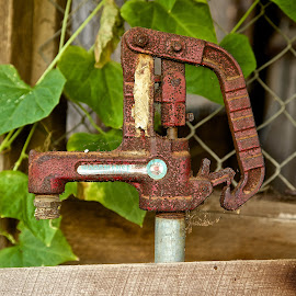Water pump by Dan Ferrin - Artistic Objects Other Objects ( rusty pump, barn, pump, rusty, water pump )