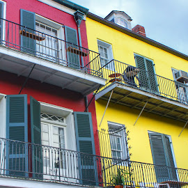 Vibrant French Quarter by Tara Bauman - Buildings & Architecture Homes ( new orleans, french quarter,  )