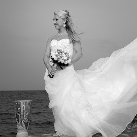 Bride on the Pier by Tony Moore - Wedding Bride ( blowing, wind, black and white, wedding, bw, pier, bride )
