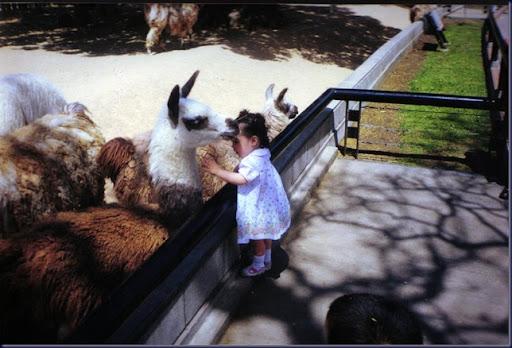 En el zoológico 06