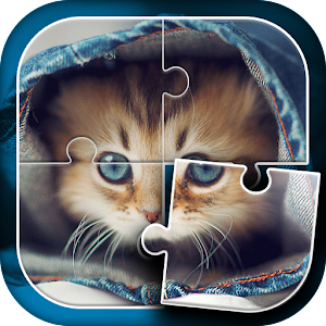 Cute Cats Jigsaw Puzzle For PC (Windows & MAC)