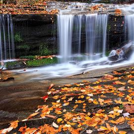 Fall & Falls by Naresh Balaguru - Landscapes Underwater ( waterfalls, autumn, fall, landscape )
