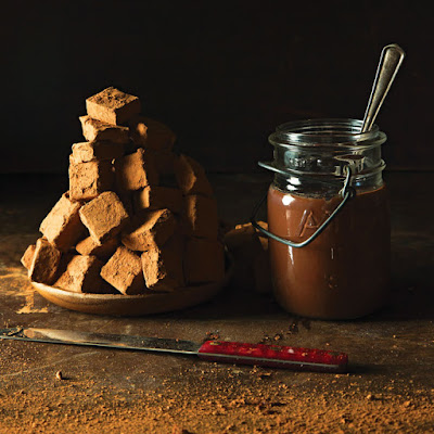 Alice Medrich's Chocolate Pudding