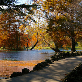 Bridge Over Cedar Lake by Pat Lasley - Landscapes Waterscapes ( spring grove, fall colors, waterscape, autumn, fall, cemetery, bridge, pond )