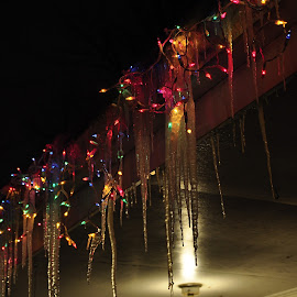 Frozen Christmas by Brian Hughes - Artistic Objects Other Objects ( i suck at titles, christmas lights, iceicles, frozen, wimter )
