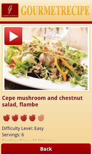 Gourmet Recipes Lite