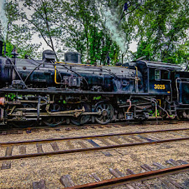 New Haven Express by Andre Moraes - Transportation Trains ( old, connecticut, locomotive, essex, trains, steam,  )