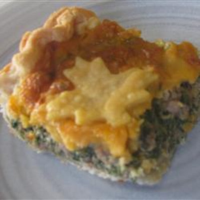 Hamburger Spinach Quiche
