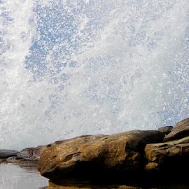 Liquid Walls by Silvan Saria - Nature Up Close Water ( water, walls, seawater, sealife, beautiful, white, ocean, oceanlife, photography )