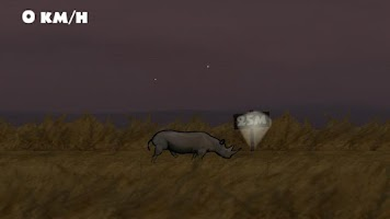 Screenshot of The Rhino Game