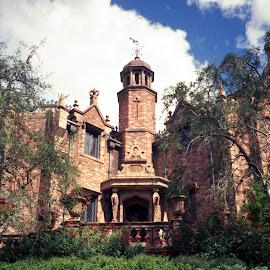 Haunted Mansion by Steve Randall - City,  Street & Park  Amusement Parks ( disney world, florida, theme park, disney, haunted mansion )