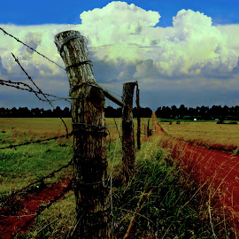 Cumulonimbus On The Plains by Vince Scaglione - Landscapes Cloud Formations ( clay, clouds, cloud formations, fence, cumulus, dirt road, cumulonimbus, barb wire, landscape, country,  )