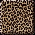 KakaoTalk 3.0 Theme : Leopard icon