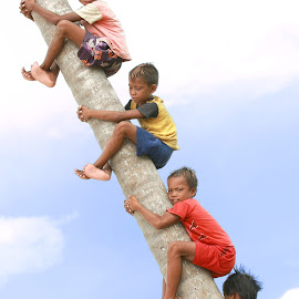 Boys On The Tree by Sunny Wong - Babies & Children Children Candids