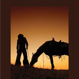 Sunset Cowboy by Susan Byrd - Animals Horses ( sunset, silhouette, western captures photography, horse, western )