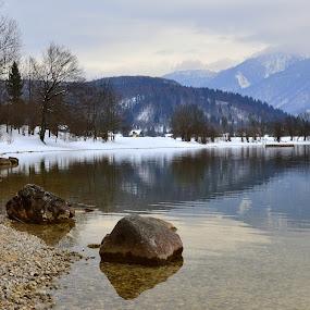 Bohinj Lake by Silva Predalič - Landscapes Waterscapes ( winter, slovenia, snow, reflections, lake, stones, bohinj,  )