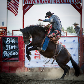 Let Him Rip by Mike Trahan - Sports & Fitness Rodeo/Bull Riding ( cowboy, horse, rodeo, bronco, bucking, lake county fair )