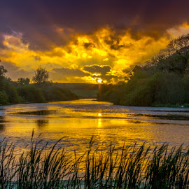 Quoile Sunset by Terry Hanna - Landscapes Waterscapes ( quoile, sunset, n ireland, co down, river )