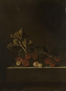 RIJKS: Adriaen Coorte: A Sprig of Gooseberries on a Stone Plinth 1699