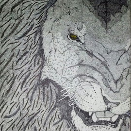 The King by Valerie Higgs - Drawing All Drawing ( big cat, king of the jungle, lion, big cats, lions, male lion )