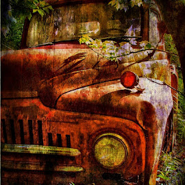 Orange Truck in the Woods by Julie Dant - Transportation Automobiles ( orange truck, antique vehicles, orange, trucks, old trucks, antique trucks )