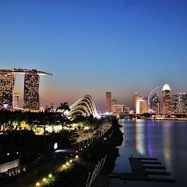 Marina Barrage by Koh Chip Whye - City,  Street & Park  Night (  )
