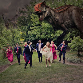 RUN by Alan Evans - Wedding Groups ( wedding photography, alan, dinosaur, bridal party, run,  )