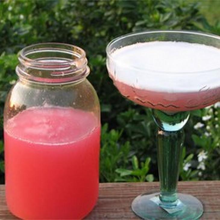 Rhubarb Margarita Recipe | Yummly