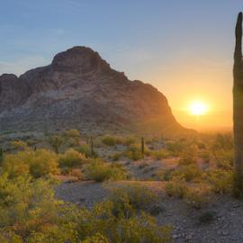 Springtime Sunrise in the Desert by Cliff LaPlant - Landscapes Deserts ( blm; arizona; sunrise; sunset; eagletail mountains; eagletail; park; wilderness; cactus; courthouse rock; spring; desert; southwest; rock; butte; light; sierralara )