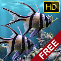 App The real aquarium - HD APK for Windows Phone