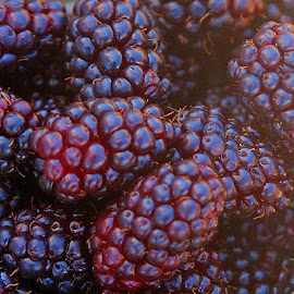 So Berry Good by Sherri Woodbridge - Food & Drink Fruits & Vegetables ( bowl, berry, picked, fruit, fresh, ripe, blackberries, garden, berries )