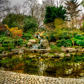 Holland Park by Jime Fernandez - City,  Street & Park  City Parks ( winter, japanese garden, london, kyoto, holland park )