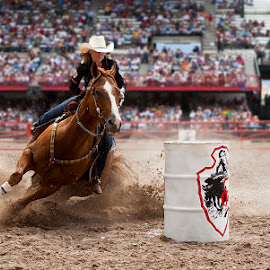 Sweetheart of the Rodeo by Ty Stockton - Sports & Fitness Rodeo/Bull Riding ( barrel racing, barrels, rodeo, cowgirl, cheyenne frontier days, timed events )