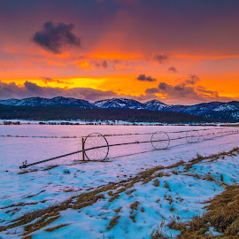 Sunset behind the hayfields by Leon Kauffman - Landscapes Sunsets & Sunrises ( mountains, highway 200, sunset, montana, snow, potomac, irrigation )