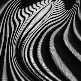 reflection of makara by Ag Adibudojo - Abstract Patterns ( reflection, black white, makara )