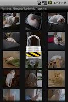 Screenshot of Yandex Photo Albums Key