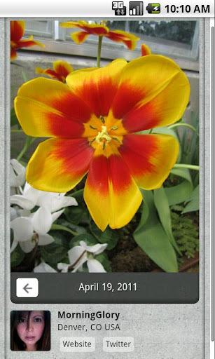【免費攝影App】Momentile-APP點子