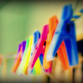 by Arkadeb Kar - Artistic Objects Other Objects ( abstract, blurred, colourful, still life, clips )