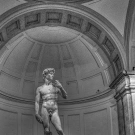 David by Darin Williams - Buildings & Architecture Statues & Monuments ( sculpture, michelangelo, statue, florence, david, academy gallery )