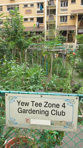 Yew Tee Community Garden