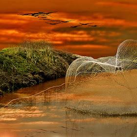 river landscape.jpg