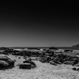 Wet Rocks I by Rodrigo Luft - Landscapes Beaches ( black and white, sea, beach, rocks,  )