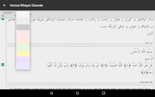Screenshot of Risale-i Nur Okuma Android
