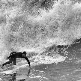 Surfing California by Jose Matutina - Sports & Fitness Surfing ( b&w, black and white, orange county, surfer, california, huntington beach,  )