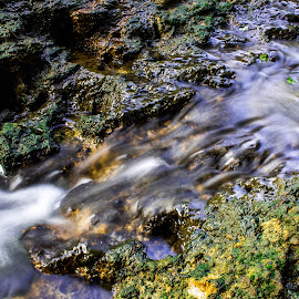 Natures little Waterfall by Justin Burger - Nature Up Close Water ( water, nature, moss, rock, morning )