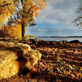 Minnesota  Autumn by Mary Bray - Landscapes Weather ( autumn, fall, minnisota, trees, lake )